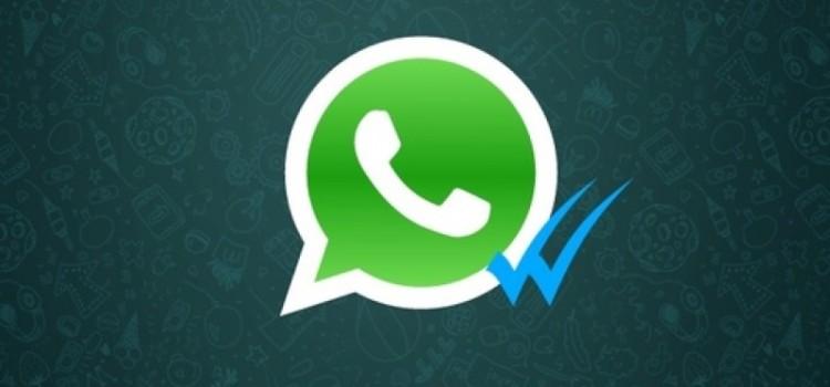 Eliminare la spunta blu di Whatsapp