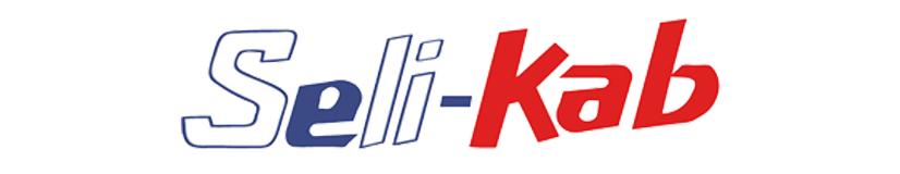 Logo Selikab